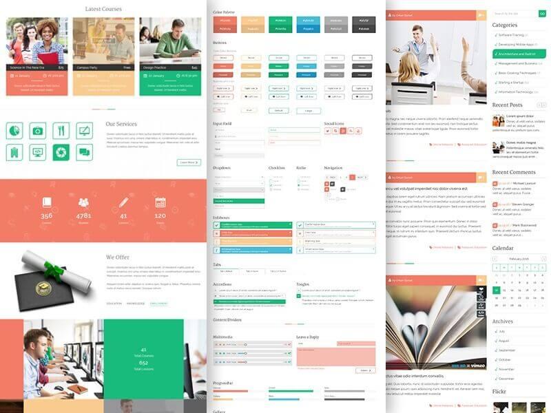 Educational Website Design 18